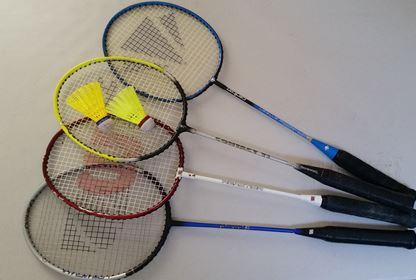 Sports Badminton (8)