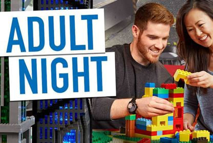 lego adult night