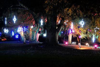 Dunham Massey's Magical, AfterDark, Illuminated Trail   2