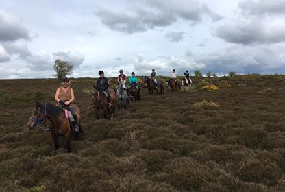 Horse Riding Weekend for Beginners, Intermediates and Experienced Riders