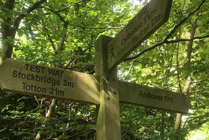 Test Way Signpost Walk
