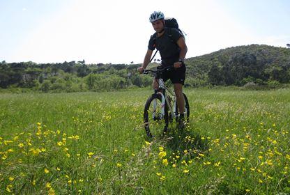 Bicikli002