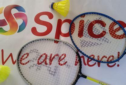 Sports Badminton (4)