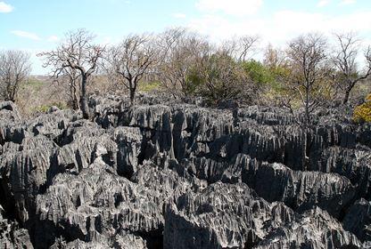 Anrakana NP  Tsingy (2)