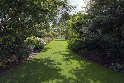 rhs hyde hall garden long avenue trees lawn