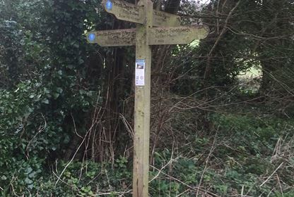 South Downs Way Signpost Walk