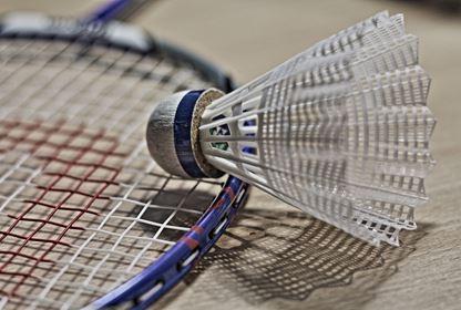 Sports Badminton (9)
