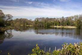 bittle reservoir
